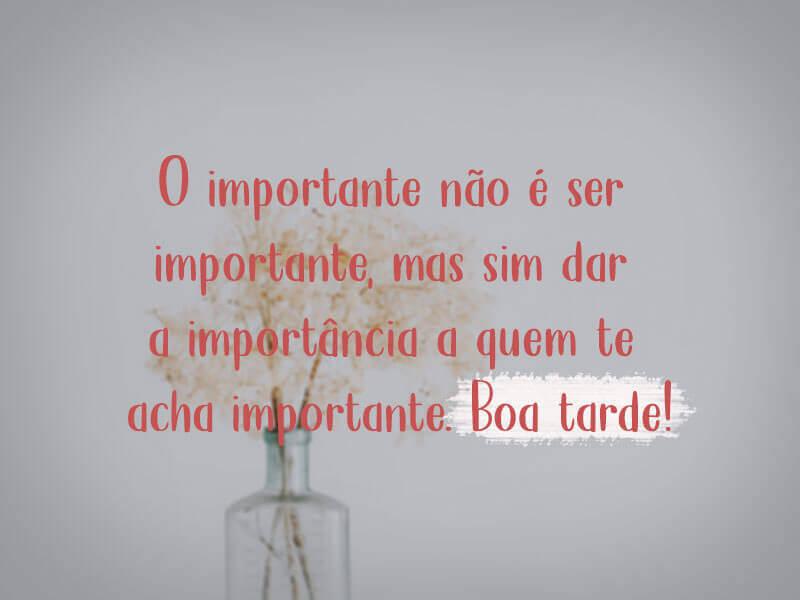 O importante não é ser importante, mas sim dar a importância a quem te acha importante.