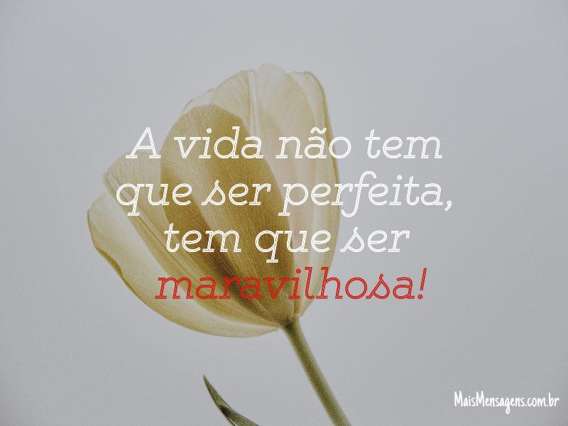 A vida não tem que ser perfeita, tem que ser maravilhosa!